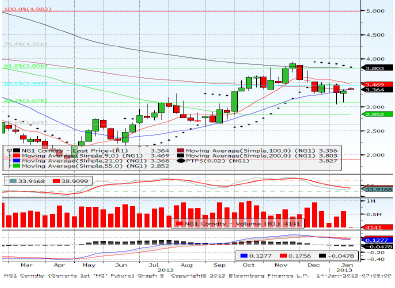 Natural Gas Feb contract Forecast for 18th January 2013