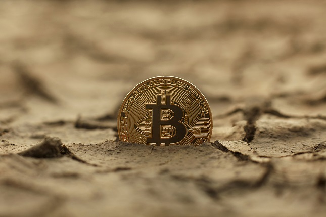 Bitcoin Sees Red but is looking to make a Move