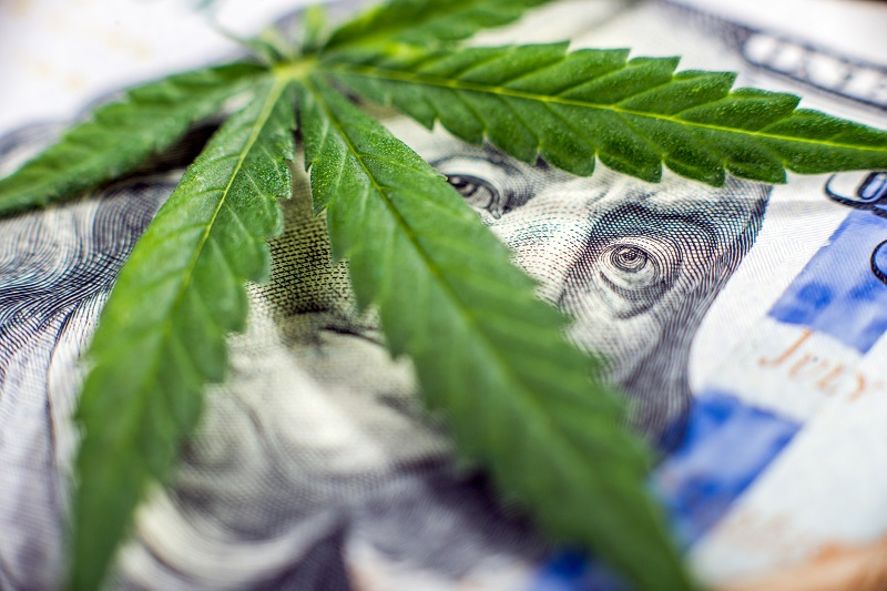 Medical Marijuana: What Investors Need to Know About this Booming Market