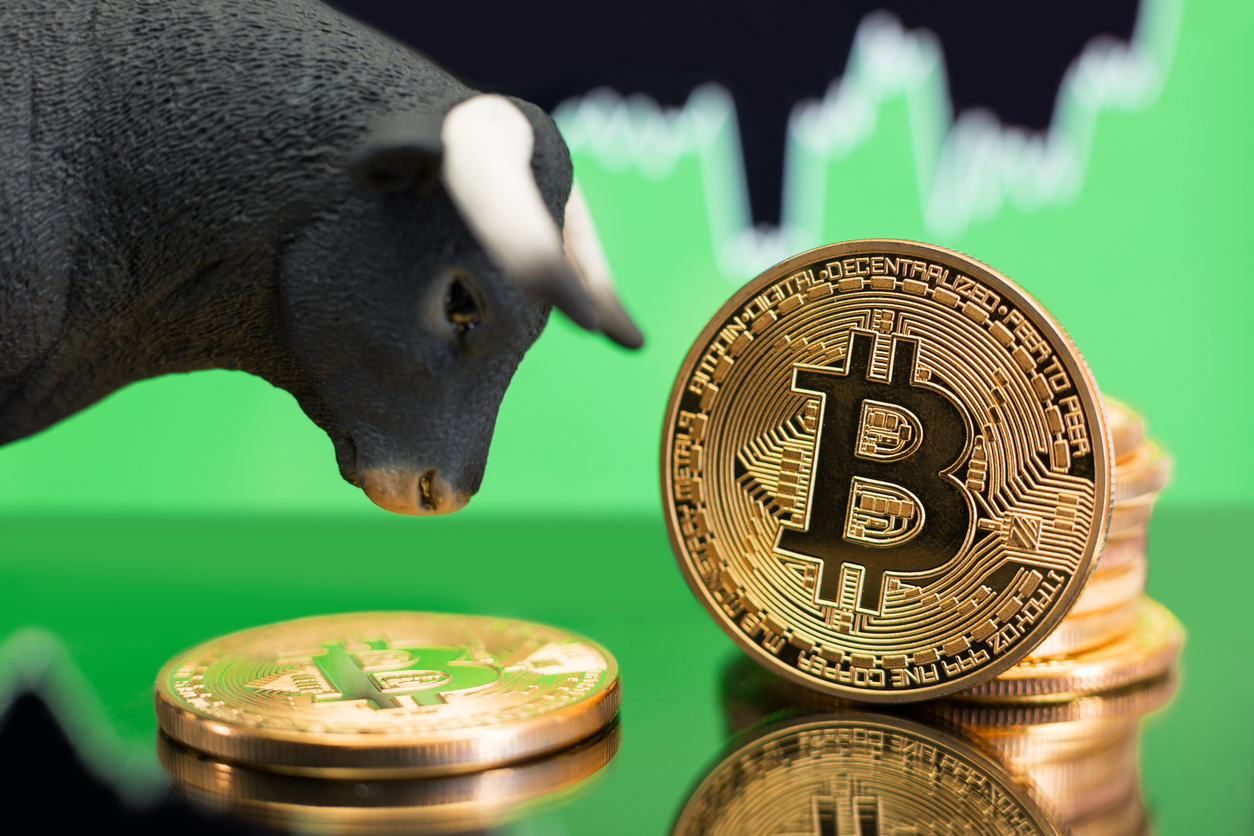 Bitcoin bull market