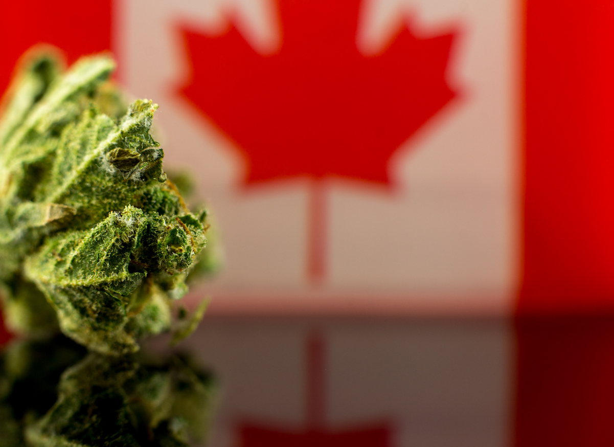 Why Pension Funds Invest in Cannabis?