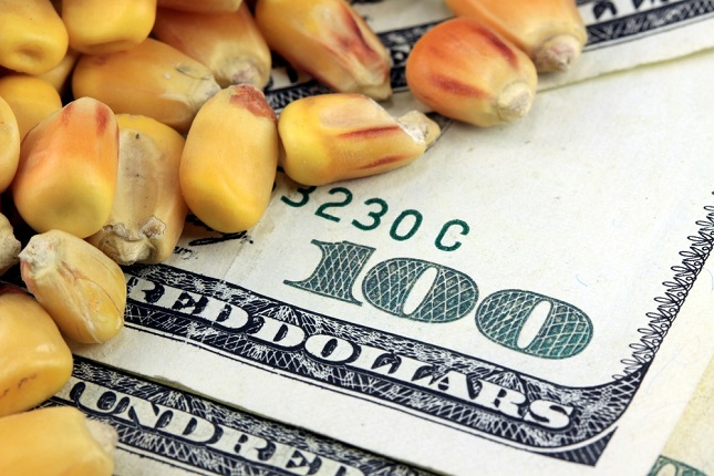 Soybeans lead grains, rollercoaster with buying zone Opportunity