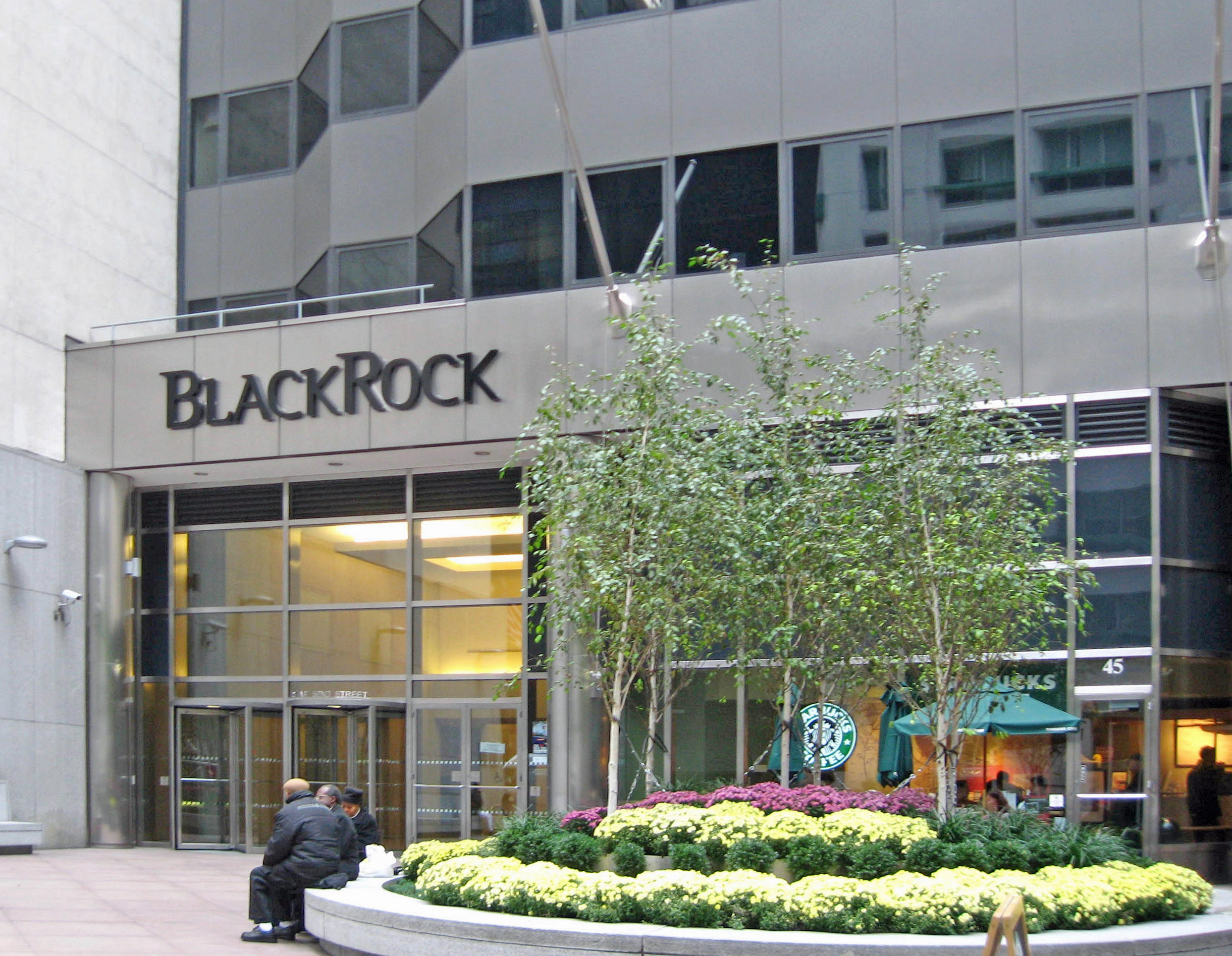 BlackRock stock