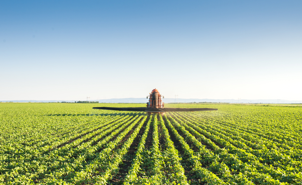 How to Hedge Organic Corn and Organic Soybeans