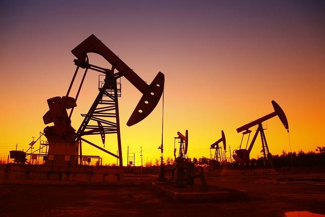 Oil rebounds on robust economic data