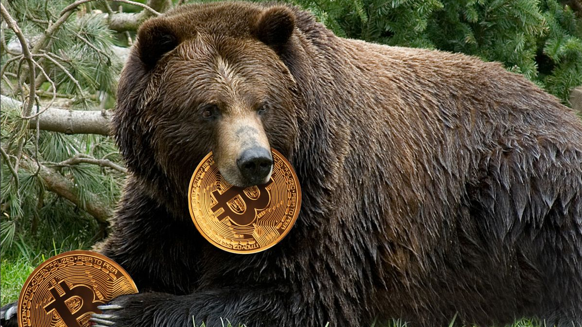 Bitcoin Has Entered A Bear Market? Here Is How You Profit Off A Red Market