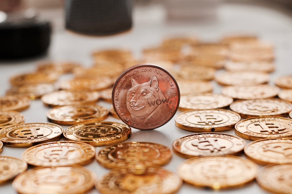 Brass dogecoin coin