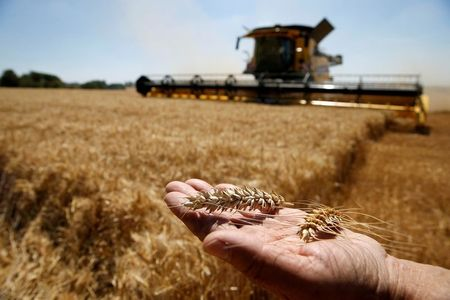 Commodity Markets Set for High Volatility, Says Louis Dreyfus