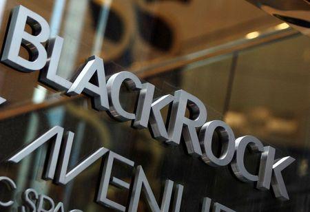 Blackrock Directors, Executive Pay Pass at Annual General Meeting