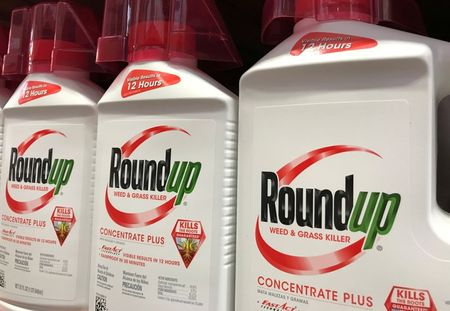 FILE PHOTO: Bayer unit Monsanto Co's Roundup shown for sale