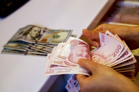 الليرة التركية تواصل انخفاضها لتبلغ مستوى قياسيا أمام الدولار